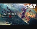 #67【アクション】最弱ウィッチャーのウィッチャーⅢ【The Witcher 3:デスマーチ】