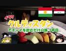 イラク・クルディスタンでチャイを飲むだけの旅 1杯目 羽田→ドーハ→エルビル