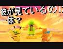 【ポケダンDX】 第五幕 精霊の丘のネイティオの目には何が見えている?