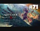 #71【アクション】最弱ウィッチャーのウィッチャーⅢ【The Witcher 3:デスマーチ】