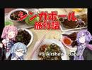 【葵茜紫】シンガポール旅行話 #9 Airshow(後編) - 帰国