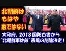【海外の反応】 韓国の 2018国防白書 「北朝鮮は もはや敵ではない。」 本当に 大丈夫なのか?