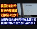 【海外の反応】 韓国は 日本の 友好国ではないのか? 自衛隊機の 威嚇飛行を 主張する 韓国に 海外から 呆れ声!