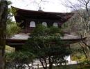 シーイーの古都京都巡り012慈照寺