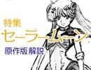 第151回「美少女戦士セーラームーン」は何と戦っていたのか?〜祭のあとに少女達が追いかけた幻の夢とは何かスペシャル!!