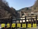 奥多摩周遊道路【1分弱車載祭】