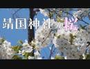【東京は満開】靖国神社の桜 [桜R2/3/25]