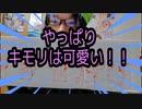 【ポケモングッズ】ポケモンセンターオンラインで買った商品を紹介!!!不思議のダンジョンの商品可愛いすぎ!!