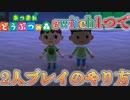 【あつまれどうぶつの森】#7 2人プレイのやり方! switch1つで最大4人プレイ