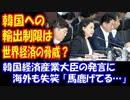 【海外の反応】 韓国への 輸出制限は 世界経済の脅威になる…? 韓国経済産業大臣の発言に 海外失笑 「馬鹿げてる…」