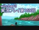 探し人を求めてwitcher3実況プレイ第159回