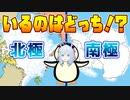 【雑学】北極と南極!ペンギンがいるのはどっち!?