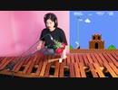 スーパーマリオブラザーズをマリンバで演奏してみた。
