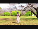 【まおぱんだ】春に一番近い街 踊ってみた【ぽっちゃり(デブ)←】