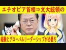 【韓国の反応】エチオピア首相と文大統領の茶番劇w【世界の〇〇にゅーす】