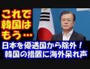 【海外の反応】  韓国が 日本を ホワイト国から 除外。 海外から呆れ声多数!
