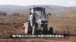 米騒動から大飢饉、餓死者が多数でいつもの中国!