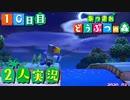 【楽しく2人実況!】~無人島の開拓生活!~あつまれ どうぶつの森【10日目】