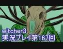 探し人を求めてwitcher3実況プレイ第167回