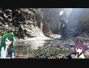 東北ずん子とgungunGUNMA釣り修行#11「早春の渓流偵察」