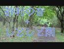 【音 音フェチ ASMR】砂利の音+しとしと雨の音