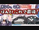 【トレバ】子供がだんだんとクレーンゲームに嵌っていく危険な動画【紫咲シオン】