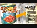 「世界で一番甘いお菓子」を1万匹のアリの巣に放り込んだら、ワクワクする結果になった。