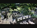 第175回『ロシア小麦輸出禁止で中国パニック』【水間条項TV】会員動画