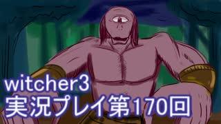 探し人を求めてwitcher3実況プレイ第170回