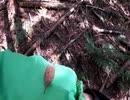 (普通に雑談?回)変態忍者の、狩猟&有害鳥獣駆除従事活動記・その103