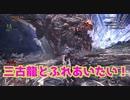 【狩りをしないモンスターハンターワールド:アイスボーン】絽紗のモンハン「ゾンビで三古龍とふれあい編」