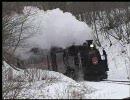 【わくわく・のりものビデオ】 おもしろ電車、SL大集合! (2/3) thumbnail