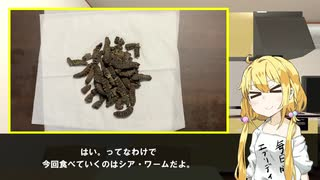 【シア・ワーム】双葉杏は怠惰に食べる【ブルキナ・ファソの伝統食】