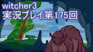 探し人を求めてwitcher3実況プレイ第175回