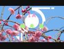 【IA車載】IAちゃんとゆっくり地元道 part.03 ~中海探索編~(+SP1 無西行DAY1-2)