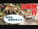 【旅動画#6】PR動画の撮影をしに和束行ってきた!!前編