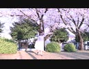 【魅ぃ】 春に一番近い街 【踊ってみた】