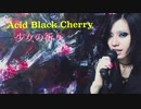 V系ソング歌ってみた: Acid Black Cherry 「少女の祈り」cover