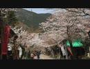 200403谷汲山華厳寺の門前に行ってみた(Ver.ニコ動)