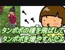 【愛奈】タンポポの種を飛ばしてタンポポを増やすんだよ【2才5か月】