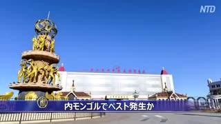 内モンゴルでペスト発生か 当局は情報封鎖