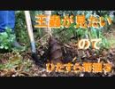 庭の竹林から王蟲を掘り出すPart1