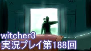探し人を求めてwitcher3実況プレイ第188回