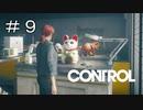 #9【CONTROL】今回の癒しネコ