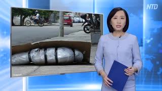 段ボールの棺桶・中国のエサと化したエクアドルの悲惨な末路