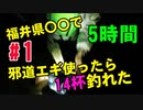 【#1 ヤリイカ爆釣】邪道エギを福井県○○で使ったら数時間で〇〇杯釣れました!ヤリイカ エギング 釣り遠征。