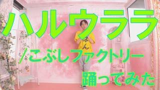 【ぽんでゅ】ハルウララ/こぶしファクトリー踊ってみた【ハロプロ】
