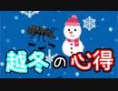 【アリの飼育記#177】アリの越冬の過ごし方 Notes on ant rearing in the winter season