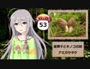 【モバマス】星輝子とキノコの話53 アミガサタケ