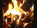 焚き火パチパチ   竹